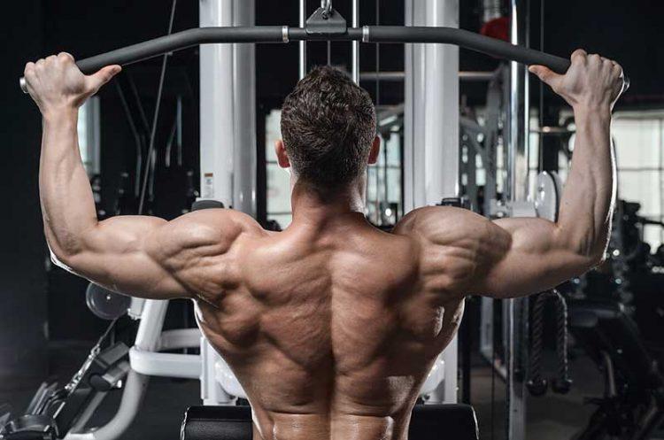9 Alternatives à Lat Pulldown pour renforcer votre dos
